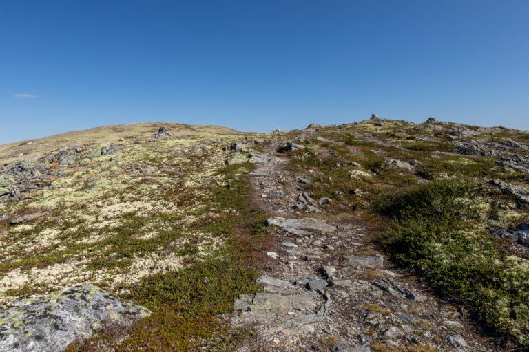 Stien opp til toppen er tydelig og lett å gå - og det er ikke lengre enn at selv små barn kan henge med opp her.