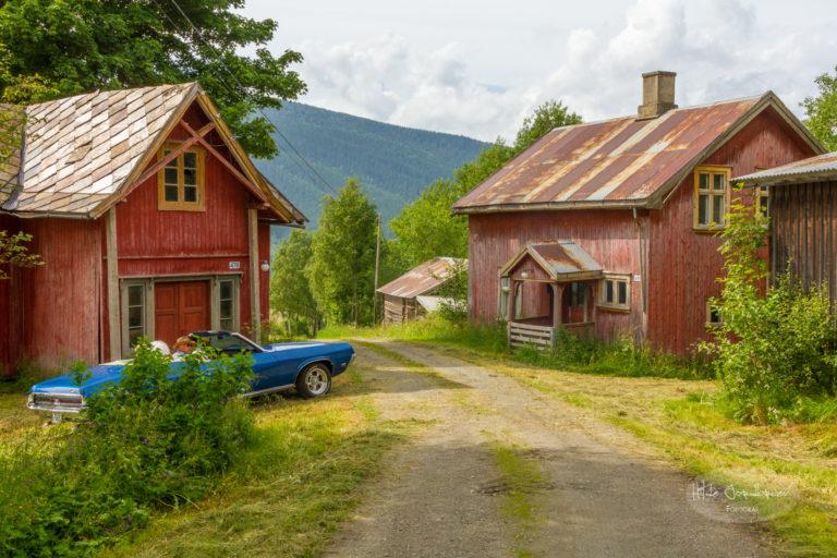 Location for portrettfotografering i Venabygd